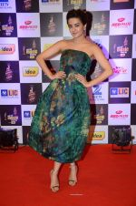 Surveen Chawla at radio mirchi awards red carpet in Mumbai on 29th Feb 2016 (411)_56d5a0b306a1d.JPG