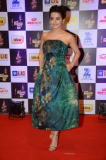 Surveen Chawla at radio mirchi awards red carpet in Mumbai on 29th Feb 2016 (412)_56d5a0b6eb0f1.JPG
