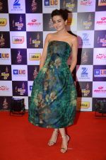 Surveen Chawla at radio mirchi awards red carpet in Mumbai on 29th Feb 2016 (414)_56d5a0bb334fa.JPG
