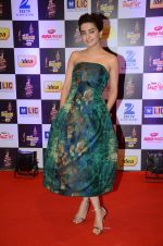 Surveen Chawla at radio mirchi awards red carpet in Mumbai on 29th Feb 2016 (415)_56d5a0bcc4d53.JPG