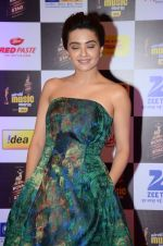 Surveen Chawla at radio mirchi awards red carpet in Mumbai on 29th Feb 2016 (431)_56d5a0c04b8d6.JPG