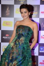Surveen Chawla at radio mirchi awards red carpet in Mumbai on 29th Feb 2016 (433)_56d5a0c3669bd.JPG