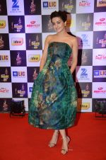 Surveen Chawla at radio mirchi awards red carpet in Mumbai on 29th Feb 2016