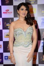 Tina Ahuja at radio mirchi awards red carpet in Mumbai on 29th Feb 2016 (210)_56d5a0c9e1241.JPG
