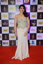 Tina Ahuja at radio mirchi awards red carpet in Mumbai on 29th Feb 2016 (211)_56d5a0cc88ecd.JPG