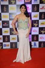 Tina Ahuja at radio mirchi awards red carpet in Mumbai on 29th Feb 2016 (213)_56d5a0cf30ef0.JPG