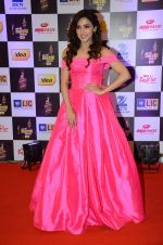 at radio mirchi awards red carpet in Mumbai on 29th Feb 2016 (161)_56d59e1d6f315.JPG