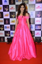 at radio mirchi awards red carpet in Mumbai on 29th Feb 2016 (173)_56d59e23d7ffd.JPG