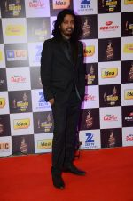 at radio mirchi awards red carpet in Mumbai on 29th Feb 2016 (316)_56d59e33248e4.JPG
