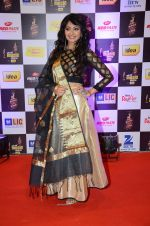 at radio mirchi awards red carpet in Mumbai on 29th Feb 2016 (323)_56d59e398c079.JPG