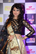 at radio mirchi awards red carpet in Mumbai on 29th Feb 2016 (329)_56d59e3d24b99.JPG
