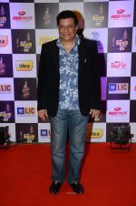 at radio mirchi awards red carpet in Mumbai on 29th Feb 2016 (333)_56d59e3ed91c1.JPG