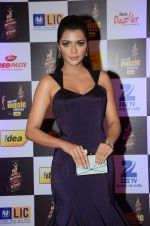 at radio mirchi awards red carpet in Mumbai on 29th Feb 2016 (387)_56d59e4f2c19a.JPG