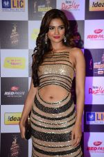 at radio mirchi awards red carpet in Mumbai on 29th Feb 2016 (399)_56d59e5c06136.JPG