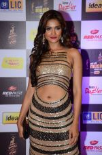at radio mirchi awards red carpet in Mumbai on 29th Feb 2016 (401)_56d59e5d04e6b.JPG