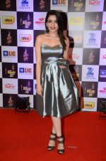 at radio mirchi awards red carpet in Mumbai on 29th Feb 2016 (436)_56d59e5f05e21.JPG