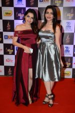 at radio mirchi awards red carpet in Mumbai on 29th Feb 2016 (440)_56d59e62e6fb0.JPG