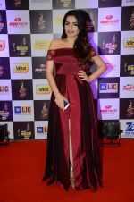 at radio mirchi awards red carpet in Mumbai on 29th Feb 2016 (441)_56d59e63c6ede.JPG