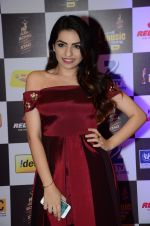 at radio mirchi awards red carpet in Mumbai on 29th Feb 2016 (443)_56d59e65c3304.JPG