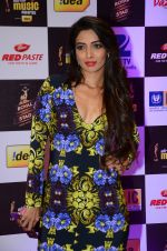 at radio mirchi awards red carpet in Mumbai on 29th Feb 2016 (464)_56d59e720dc6d.JPG