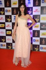 at radio mirchi awards red carpet in Mumbai on 29th Feb 2016