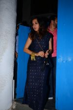 Mini Mathur at dinner party in Mumbai on 2nd March 2016 (40)_56d845c48244b.JPG