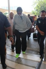 Amitabh Bachchan snapped at airport on 6th March 2016 (1)_56dd2b401aab2.JPG