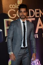Gautam Gulati at Golden Petal Awards in Mumbai on 6th March 2016 (133)_56dd2db8760d1.JPG