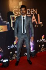 Gautam Gulati at Golden Petal Awards in Mumbai on 6th March 2016 (135)_56dd2dba737be.JPG
