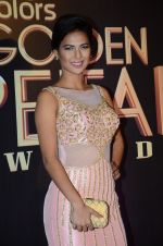 Rochelle Rao at Golden Petal Awards in Mumbai on 6th March 2016 (144)_56dd2e4f1a02e.JPG