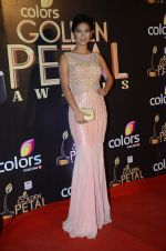 Rochelle Rao at Golden Petal Awards in Mumbai on 6th March 2016 (148)_56dd2e53da4d7.JPG