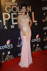 Rochelle Rao at Golden Petal Awards in Mumbai on 6th March 2016 (149)_56dd2e54cef8f.JPG