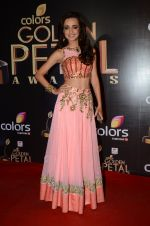 Sanaya Irani at Golden Petal Awards in Mumbai on 6th March 2016 (194)_56dd2e7cb1910.JPG