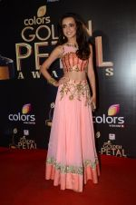Sanaya Irani at Golden Petal Awards in Mumbai on 6th March 2016 (195)_56dd2e7da99f4.JPG