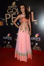 Sanaya Irani at Golden Petal Awards in Mumbai on 6th March 2016 (196)_56dd2e7e8ea3b.JPG