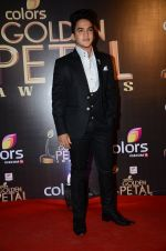 at Golden Petal Awards in Mumbai on 6th March 2016 (124)_56dd2de6b93ce.JPG