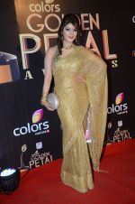 at Golden Petal Awards in Mumbai on 6th March 2016 (137)_56dd2debcabae.JPG