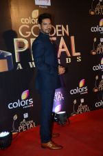 at Golden Petal Awards in Mumbai on 6th March 2016 (145)_56dd2deccfb68.JPG