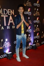 at Golden Petal Awards in Mumbai on 6th March 2016 (147)_56dd2dee8ce79.JPG