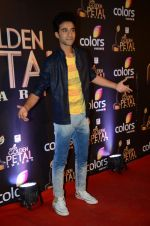 at Golden Petal Awards in Mumbai on 6th March 2016 (148)_56dd2def6d79e.JPG