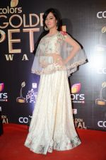 at Golden Petal Awards in Mumbai on 6th March 2016 (162)_56dd2df465581.JPG
