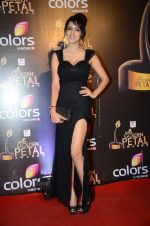at Golden Petal Awards in Mumbai on 6th March 2016 (163)_56dd2df566568.JPG