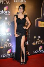 at Golden Petal Awards in Mumbai on 6th March 2016 (164)_56dd2df65ae53.JPG