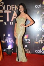 at Golden Petal Awards in Mumbai on 6th March 2016 (167)_56dd2df9c8798.JPG