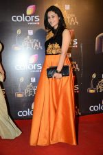 at Golden Petal Awards in Mumbai on 6th March 2016 (169)_56dd2dfc2c529.JPG