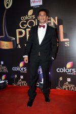 at Golden Petal Awards in Mumbai on 6th March 2016 (172)_56dd2dff6a186.JPG