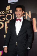 at Golden Petal Awards in Mumbai on 6th March 2016 (173)_56dd2e0041b46.JPG