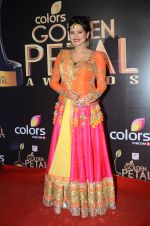 at Golden Petal Awards in Mumbai on 6th March 2016 (194)_56dd2e02dacc0.JPG