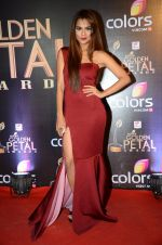 at Golden Petal Awards in Mumbai on 6th March 2016 (199)_56dd2e06e52ab.JPG
