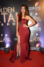 at Golden Petal Awards in Mumbai on 6th March 2016 (200)_56dd2e07d903e.JPG